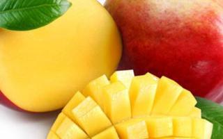 ¿El mango para reducir los niveles de azúcar en sangre?